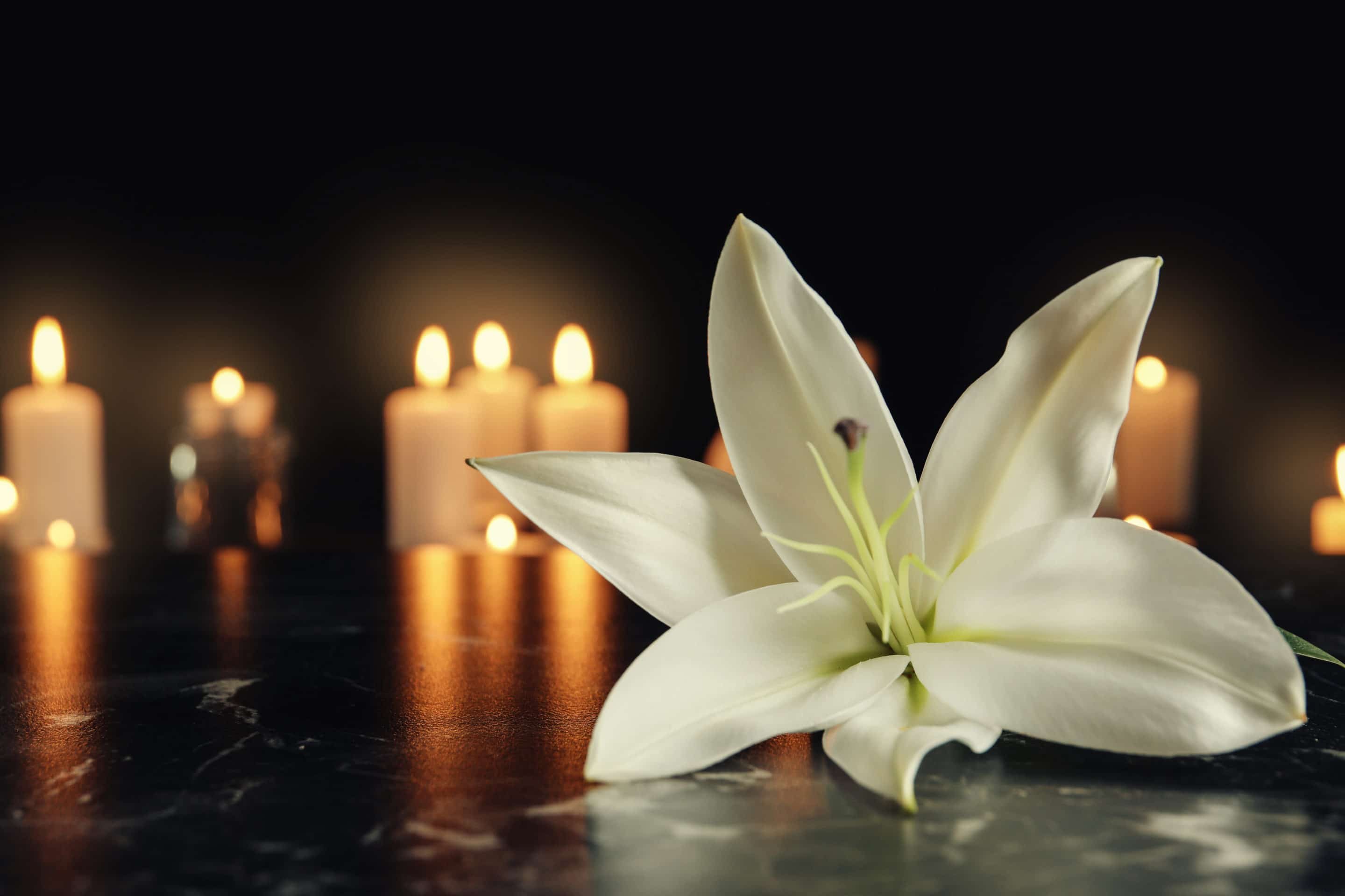 lily in front of candles - what happens to a reverse mortgage when someone dies